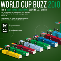World Cup Buzz 2010 Infographic