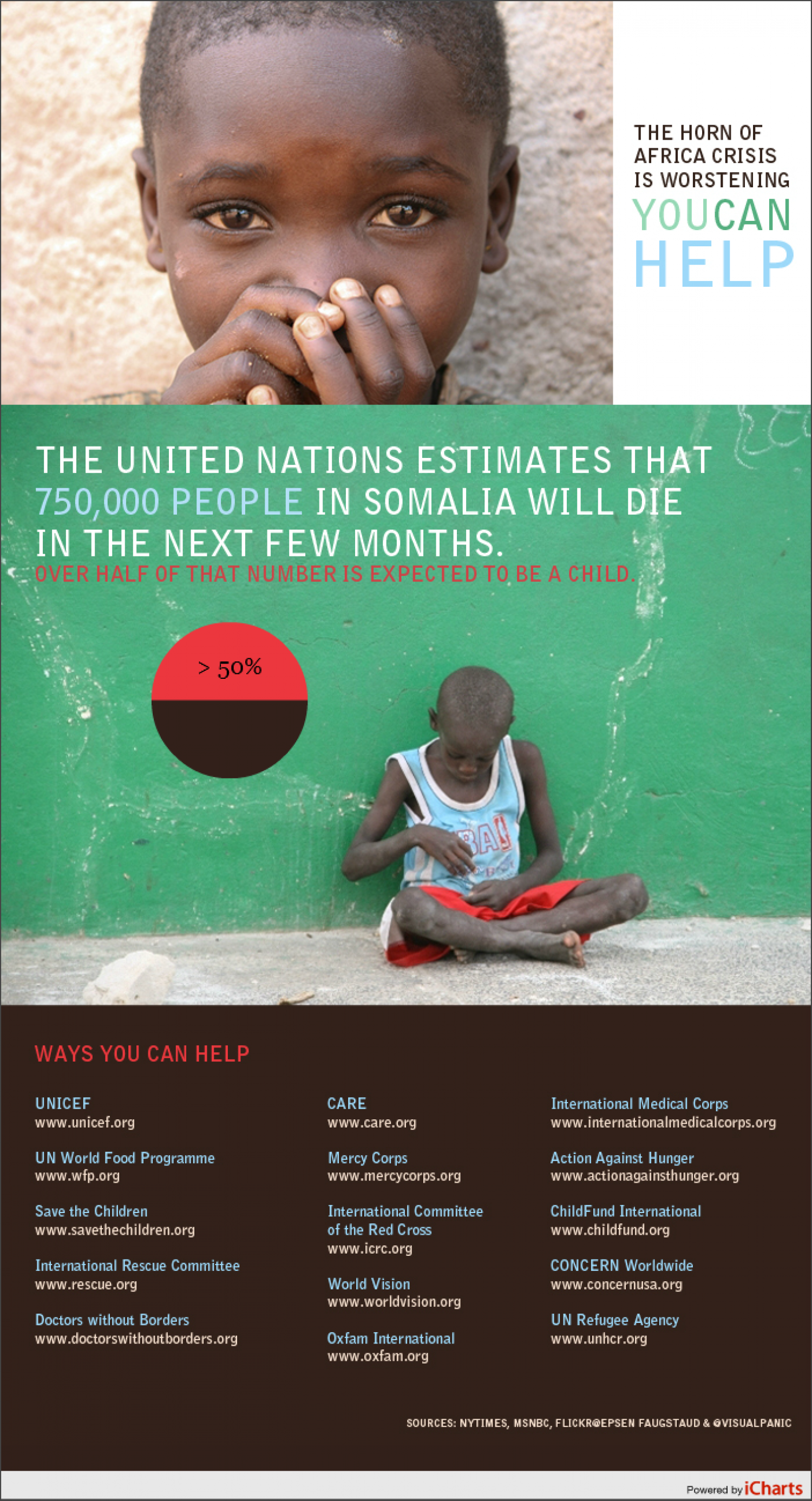 You Can Help Somalia Infographic