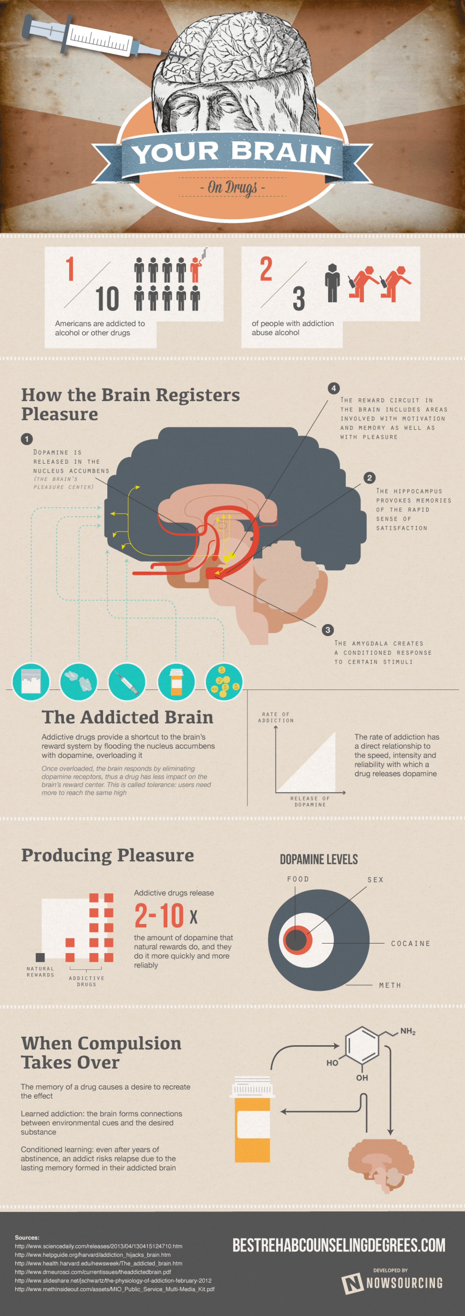Your Brain on Drugs Infographic