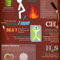 Your Farts: The Facts Infographic