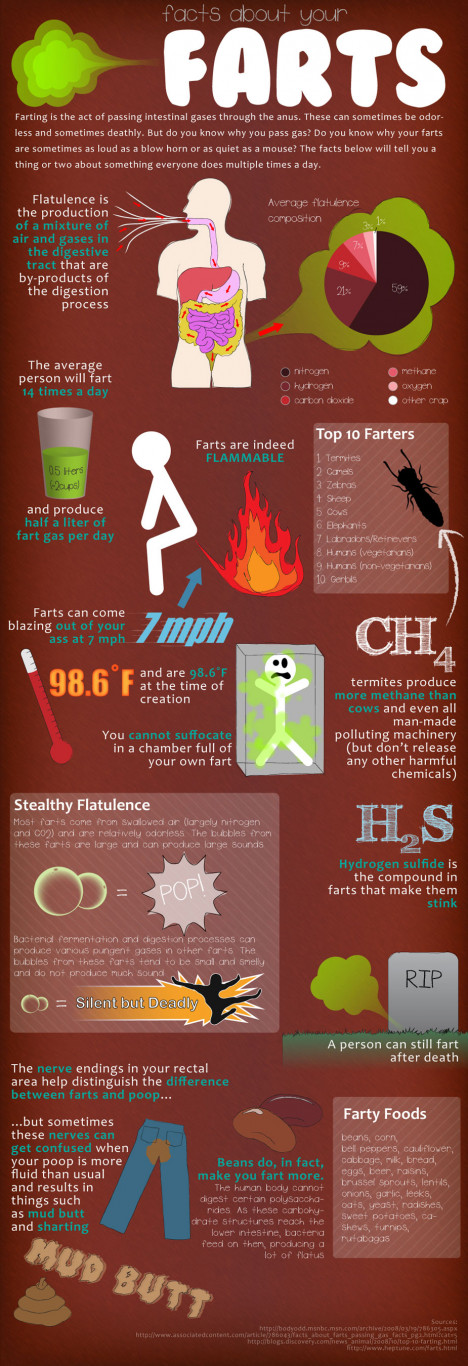 Your Farts: The Facts