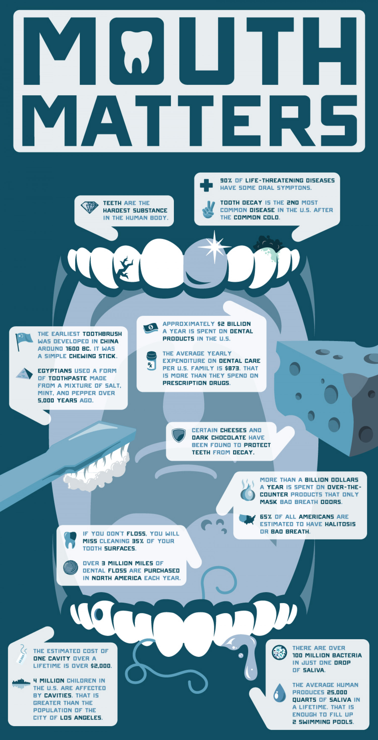 Your Mouth Matters - Fun Dental Facts Infographic