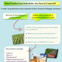 Your Production Schedule: Are you in control ? Infographic