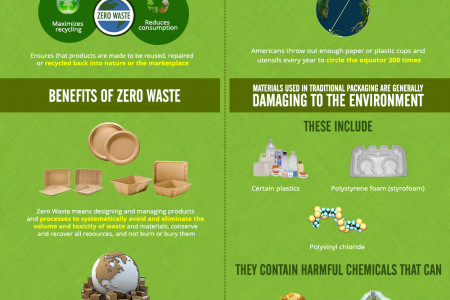 Zero Waste Packaging vs. Traditional Packaging Infographic
